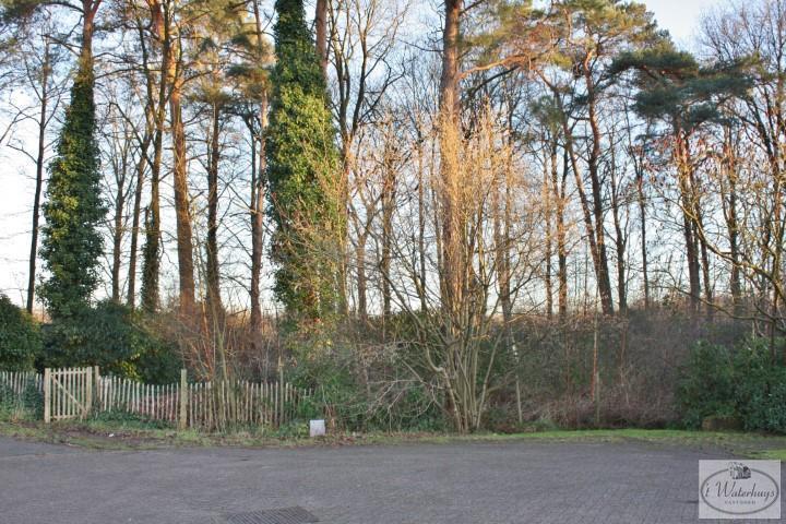 te koop - Schilde 's Gravenwezel